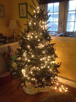The Christmas tree at the Wardigo household.